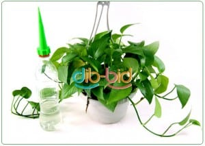 Blumen Gießen Urlaub automatische bewässerung für zimmerpflanzen 12x aufsatz für pet