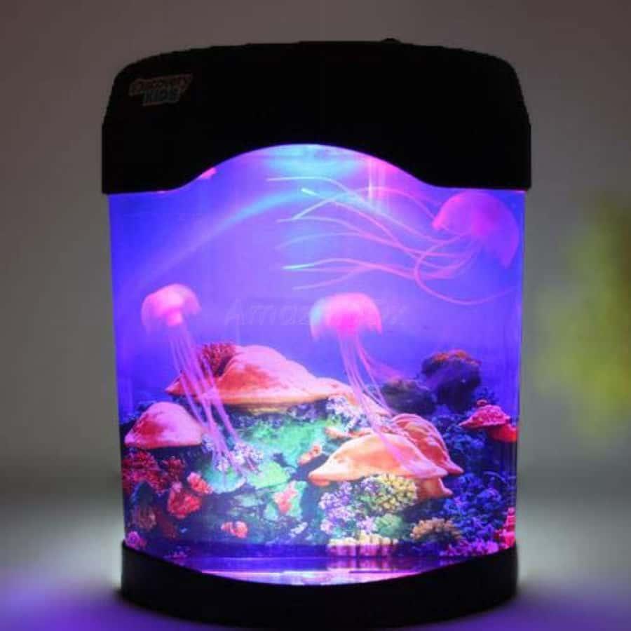 Quallen Aquarium, Gadget, bester Preis