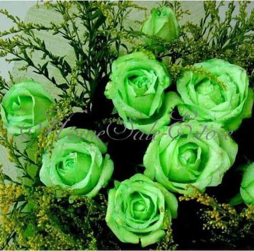 wolle rose kaufe rosensamen f r regenbogen und einfarbige rosen nur 0 73. Black Bedroom Furniture Sets. Home Design Ideas