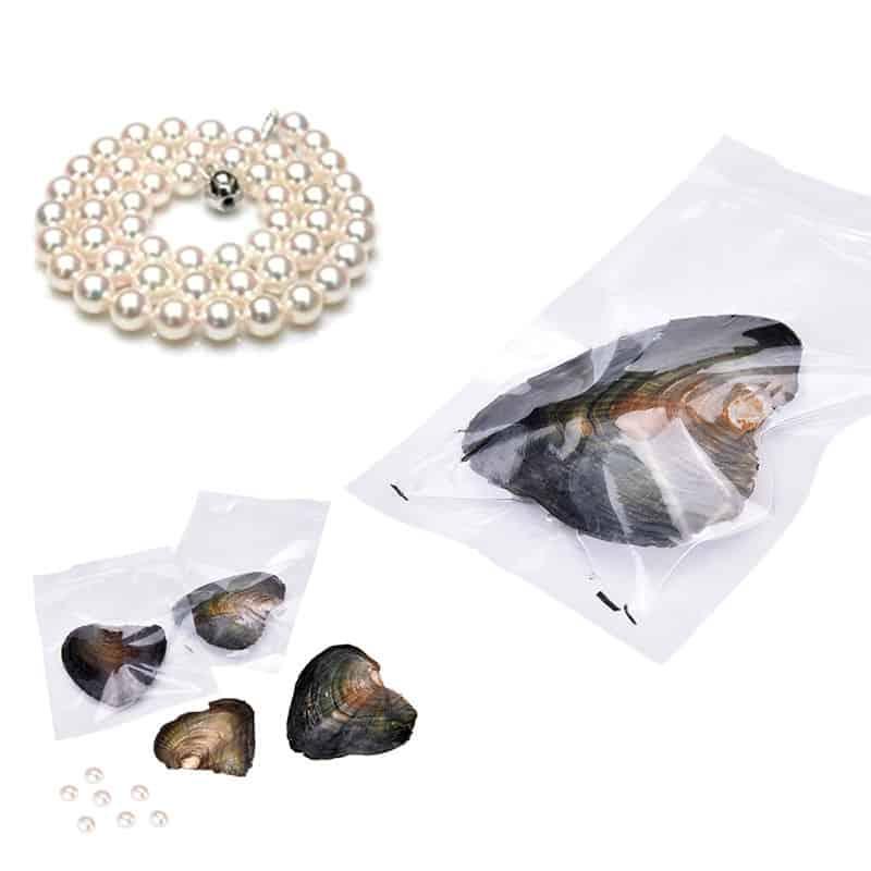 Eine Auster mit echter Perle? Entweder im Beutel oder eingelegt in einer Dose im Set mit der passenden Kette und Anhänger!