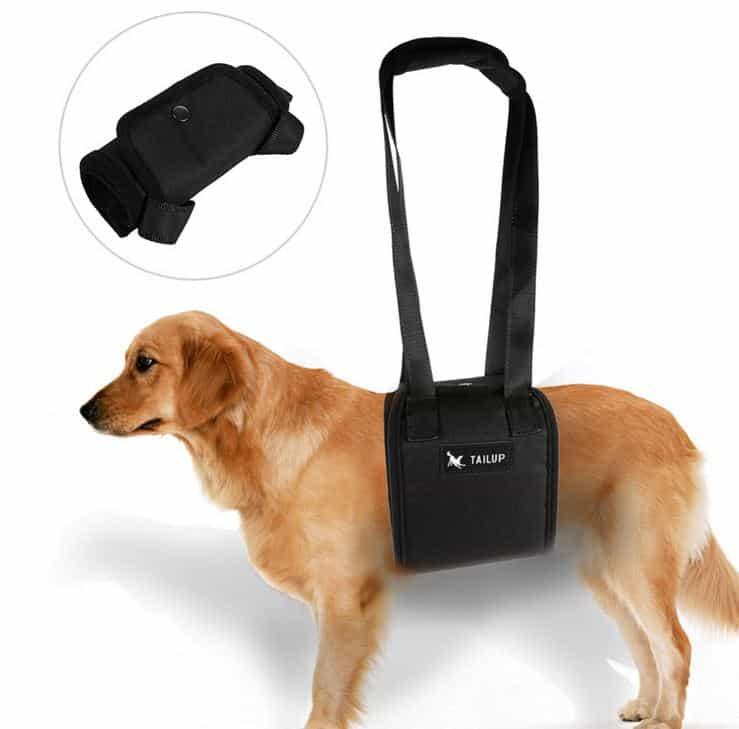 Pricedrop! Eine Gehhilfe für alte oder kranke Hunde in den Größen S, M, L oder XL!