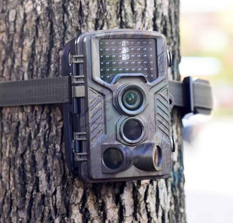 Wildkamera Kaload H801 mit 2,31 Zoll Farbdisplay für 57,32 Euro inkl. Versand!