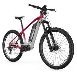 YADEA YS500 27.5 Zoll E-Bike mit 350W Mittelmotor ab 1169,- Euro aus der EU
